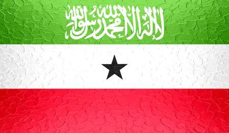 somaliland: Somaliland flag on metallic metal texture Stock Photo