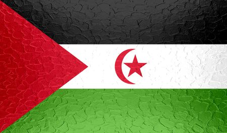 bir: Western Sahara flag on metallic metal texture