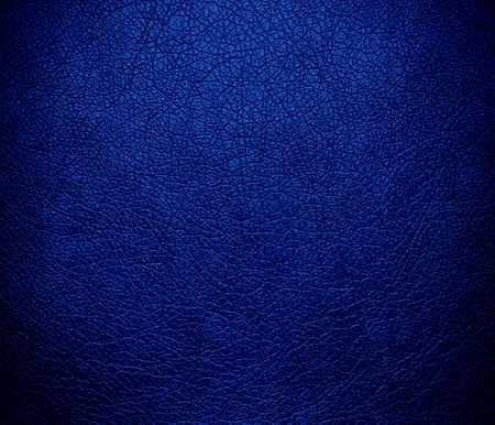 usaf: Air Force blue (USAF) leather texture background