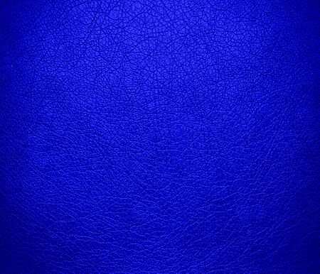 bluebonnet: Bluebonnet leather texture background Stock Photo