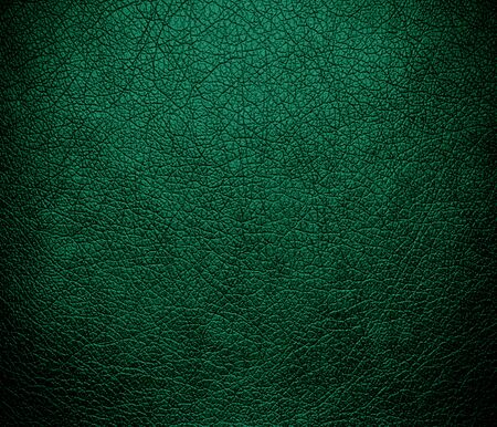 bolster: Bottle green leather texture background Stock Photo