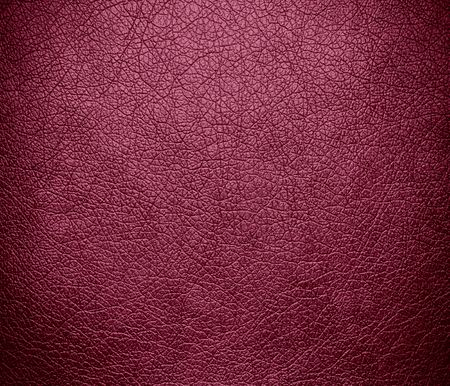 china rose: China rose leather texture background