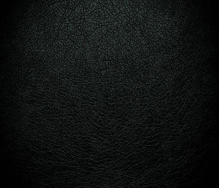 jungle green: Selva oscura de cuero verde textura de fondo