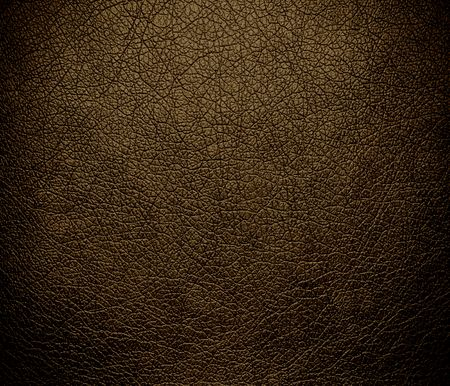bolster: Donkey brown leather texture background