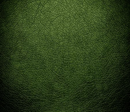 spring bud: Deep spring bud leather texture background Stock Photo