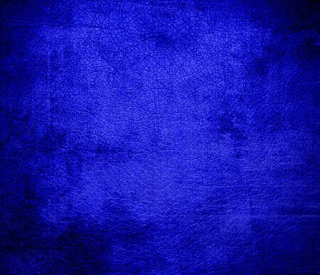 bluebonnet: Grunge background of bluebonnet leather texture