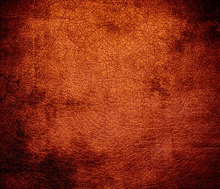 burnt orange color images & stock pictures. royalty free burnt