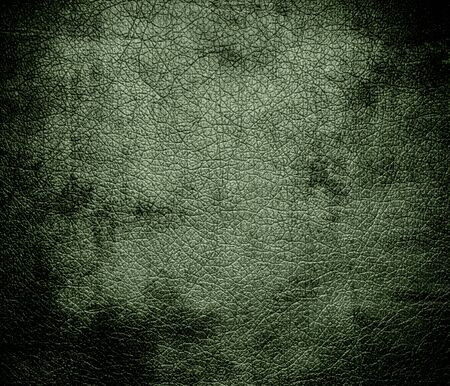bolster: Grunge background of camouflage green leather texture