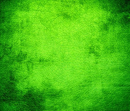 chartreuse: Grunge background of chartreuse web leather texture