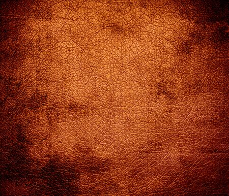 bolster: Grunge background of chocolate web leather texture