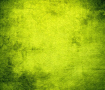 chartreuse: Grunge background of chartreuse traditional leather texture Stock Photo
