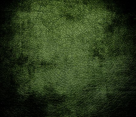 spring bud: Grunge background of deep spring bud leather texture