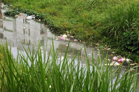 water pollution: river pollution
