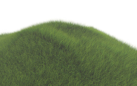 hill with green grass Stock Photo