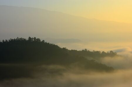 Sunrise at sea fog mountain national park, north Thailand. photo