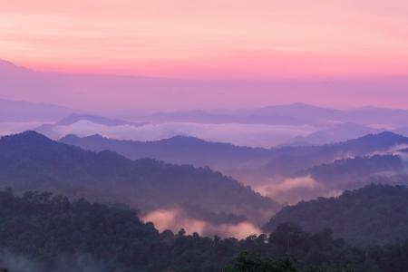 Crepuscolo bellissimo paesaggio nella foresta pluviale, Thailandia photo