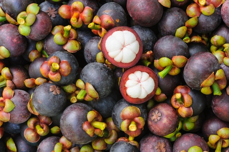 Fresh organic mangosteen Thai fruit in market thailand  photo