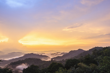 Beautiful twilight landscape in rain forest, Thailand
