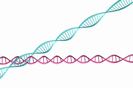 3d render ,Model of twisted DNA chain isolated on white background High resolution   photo
