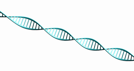 researchs: Isolated  on white background 3d render model of twisted DNA chain  Stock Photo