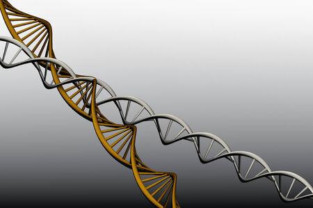 Model 3 D of twisted DNA, rander capture