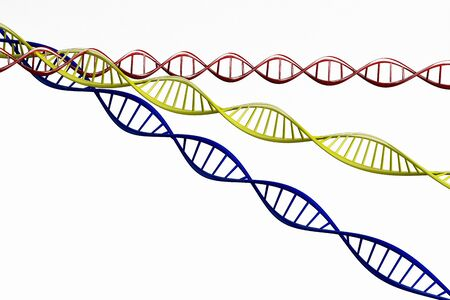 researchs: 3d render Model of twisted DNA chain isolated on white background High resolution.