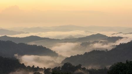 Prachtige tropische berg mist in regenwoud, Thailand. Stockfoto