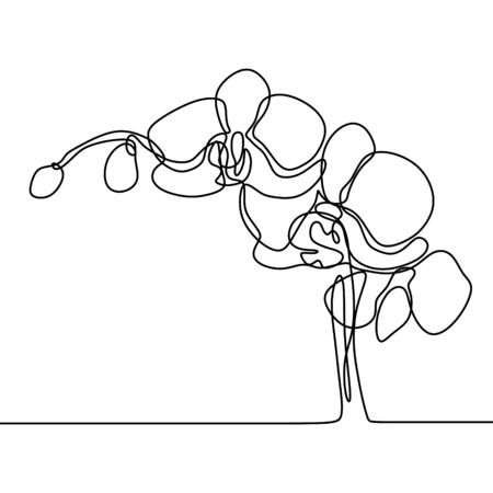 Hand drawn orchid flower. One line drawing continuous illustration vector. Minimalist art design of minimalism on white background. Иллюстрация