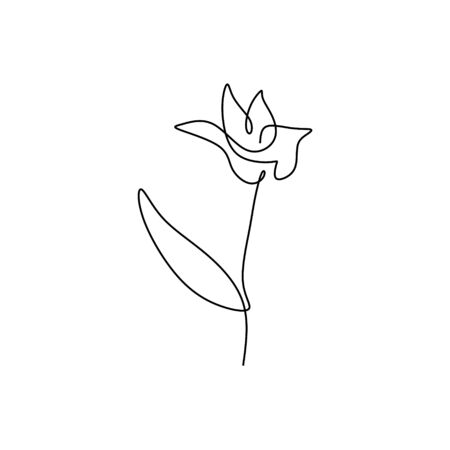 Lily flower blooming one continuous line art drawing vector illustration
