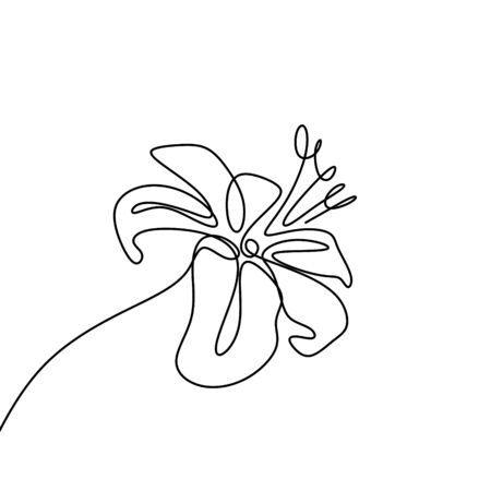 Lily flower continuous one line drawing isolated on white background vector illustration Foto de archivo - 129164322