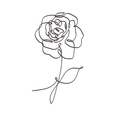 Flower continuous one line art drawing vector illustration. Beauty rose single sketch isolated on white background.