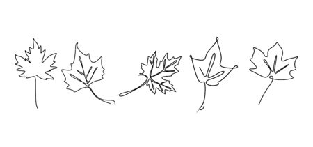 Continuous line drawing of maple leaves hand drawn set collections. Minimal design simplicity autumn theme.