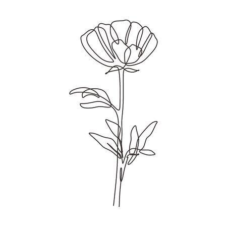 Flower one line drawing minimalism continuous lineart. Botanical garden outline. Ilustração