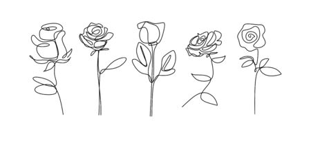 Rose flower continuous line drawing single hand drawn set element collections. Minimalism floral botanical garden vector illustration.