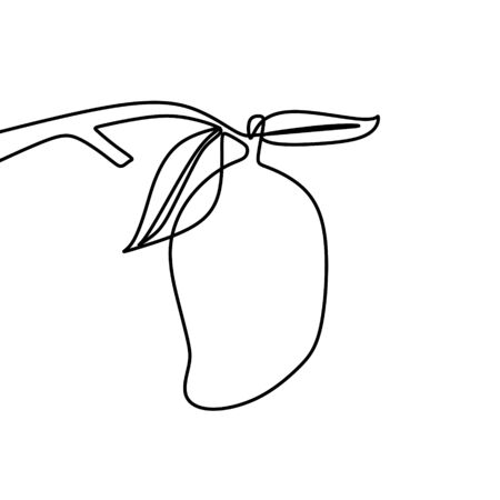 mango one line drawing vector illustration. Continuous lineart hand drawn isolated on white background.