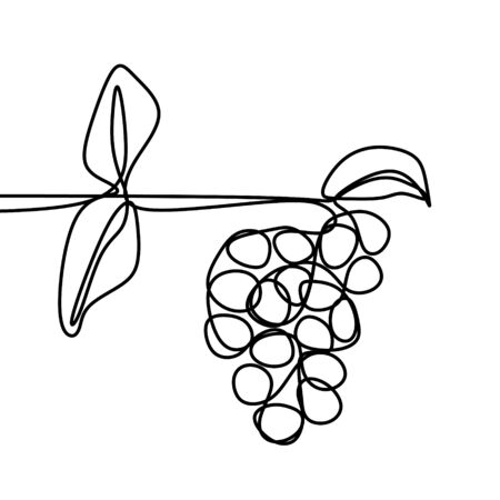 Grape one line drawing vector of fruit isolated on white background