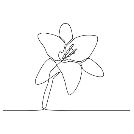 Lily flower continuous one line drawing isolated on white background vector illustration Stock Illustratie