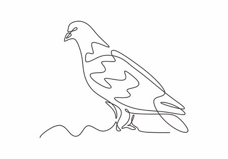 Dove or pigeon bird continuous one line drawing minimalism style. Vector hand drawn sketch animal birds design.