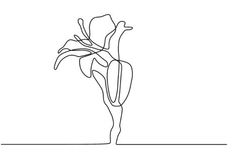 Hand drawn orchid flowers. Continuous One line drawing. Minimalist art vector minimalism.