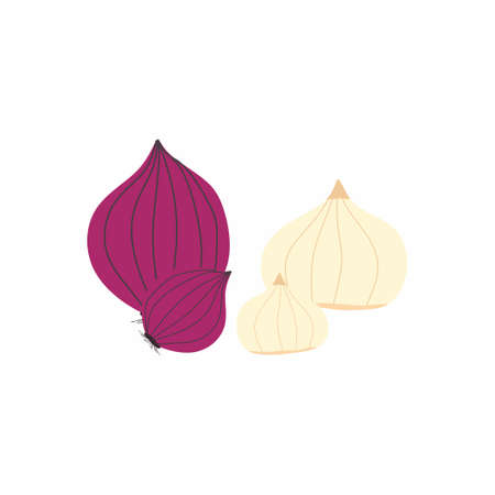 Flat design icons for red onion garlic. Fresh delicious vegan diet vegetarian products, wholesome healthy food, cooking ingredients. Vector illustration isolated on white background Ilustrace