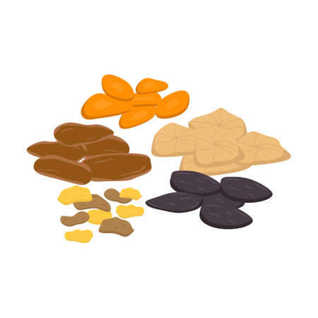 Mix of dried fruits nuts and seeds isolated on a white background. Vegetarian, healthy organic food concept. Vector icon illustration of natural sweets in cartoon flat style.