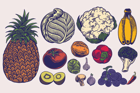 Big set of vegetables hand drawn illustrations in engraving style. Sketches of different food. Detailed isolated elements on white background, perfect for menu, book design. Healthy lifestyle concept