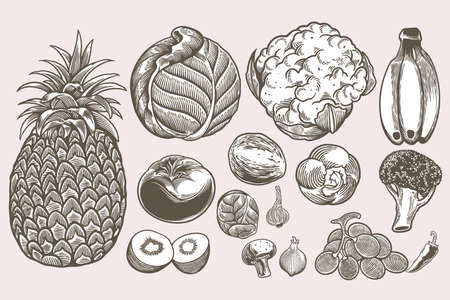 Vegan doodle set collection of hand drawn sketches templates vintage engraving doodle. Detailed isolated elements on white background, perfect for menu, book design. Vintage retro food images.