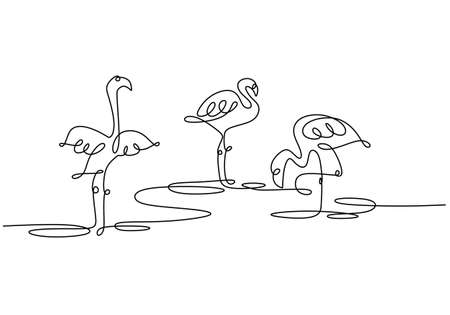 Single continuous one line drawing of three tropical bird flamingos isolated on white background. One continuous line drawing of three egrets standing on their leg