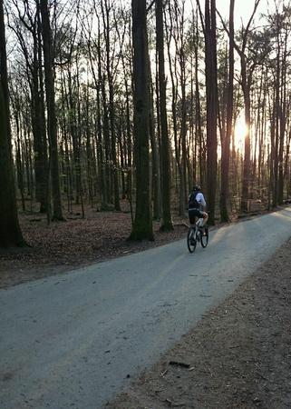 to till: Cycling till the night