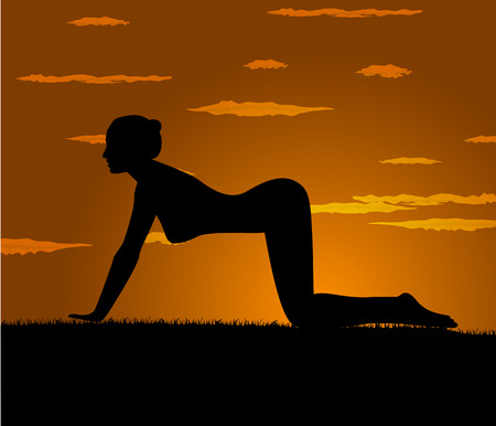 aerobics class: girl makes yoga exercise at the gloaming Illustration