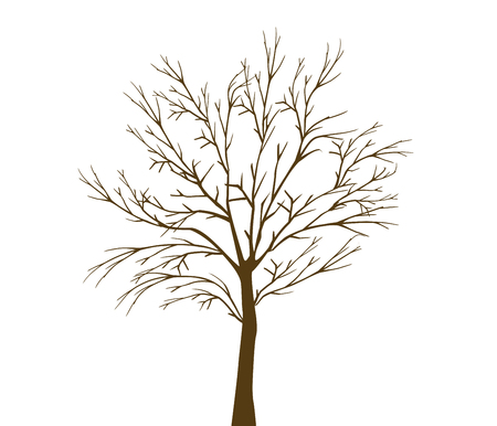withered: withered tree Illustration