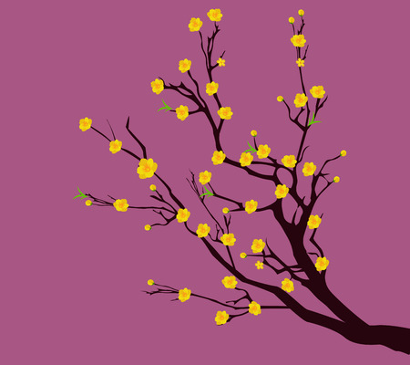 japanese apricot: Yellow Apricot Flower, traditional lunar new year in Vietnam