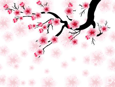 Vektor Kirschblüte für chinesisches Neujahr und Mittherbstfest