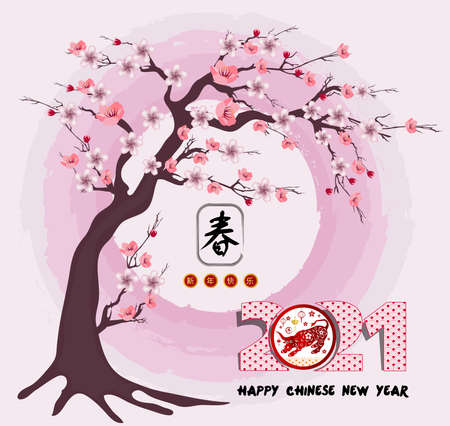 Happy chinese new year 2021 with cherry blossom flower year of the Ox Vetores